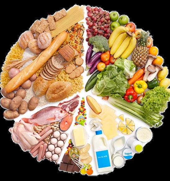 Control de Dieta-Salud Auxiliar o Enfermera para Cuidados a Domicilio